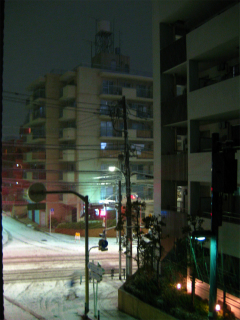 東京に雪_d0074474_14164882.jpg