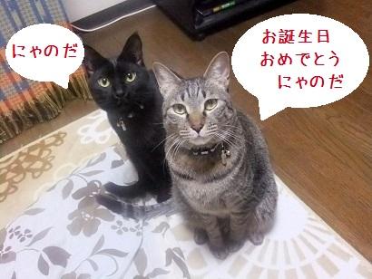 b0118850_10557.jpg