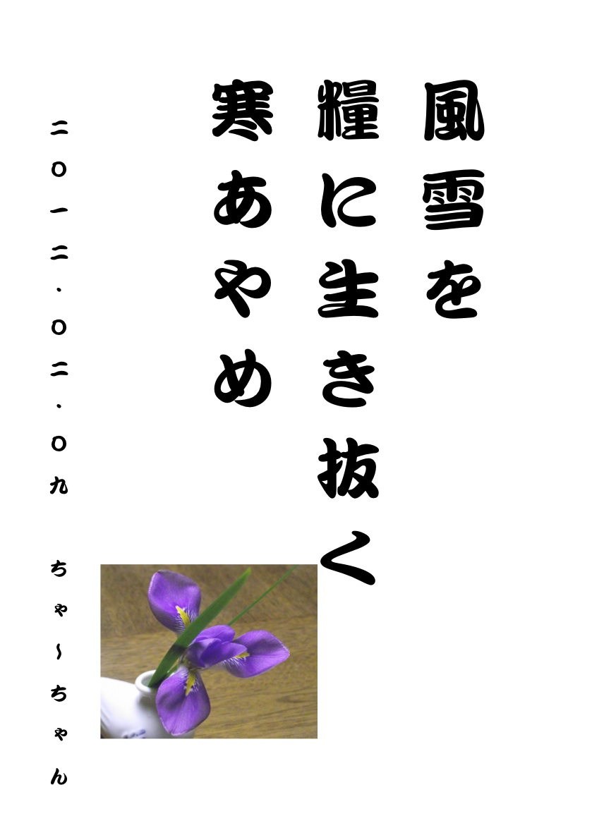 b0142158_15491719.jpg