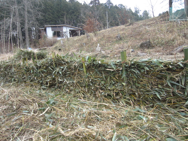 竹の活用法_d0231263_22575631.jpg