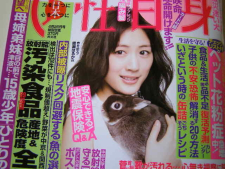 f:id:buchiusagi:20110415094145j:image