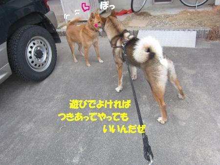 f0143123_20324115.jpg