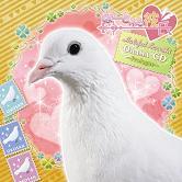 フロンティアワークス DVD・CDリリース速報!!_e0025035_12221316.jpg