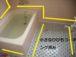f0031037_2242953.jpg