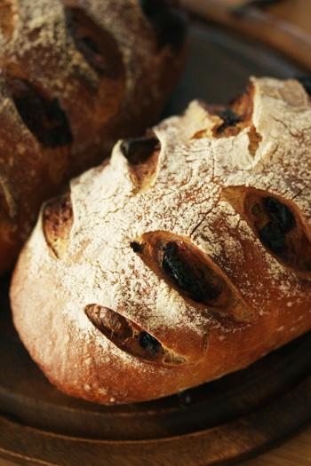 ドライフルーツとマカデミアナッツのパン_f0149855_8183751.jpg