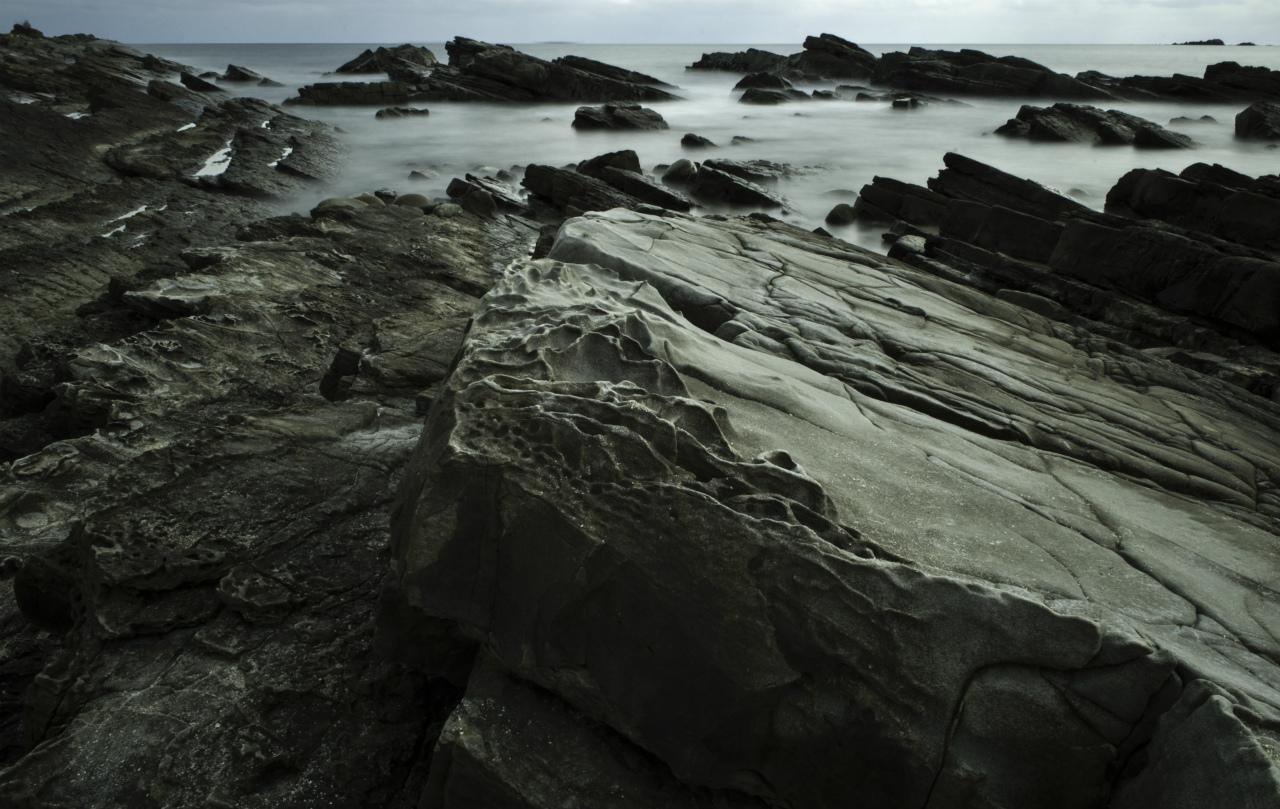 白亜紀浅海堆積物 2_f0018464_21113019.jpg