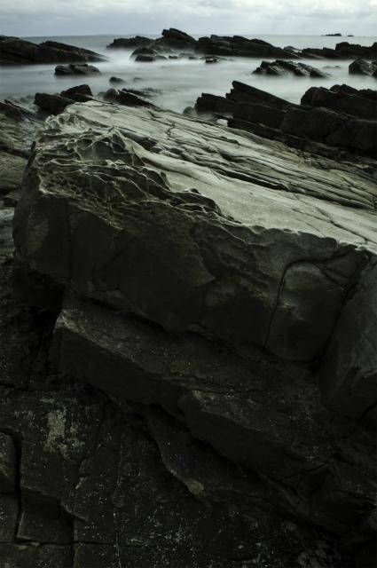 白亜紀浅海堆積物 2_f0018464_21125652.jpg