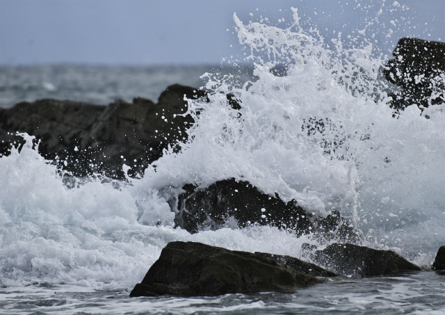 白亜紀浅海堆積物 2_f0018464_2118407.jpg