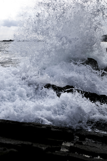 白亜紀浅海堆積物 2_f0018464_21184946.jpg