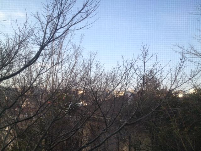 冬の朝_c0151965_923794.jpg
