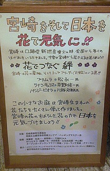 花の祭典2012・・・2月11・12日 イオンモール宮崎_b0137969_18451562.jpg