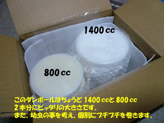 f0183484_20434369.jpg