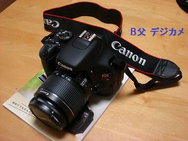 b0226221_1626359.jpg