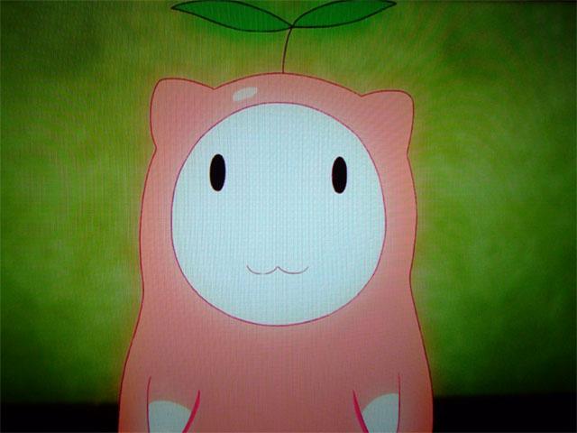『あの夏』のカピバラ ~まりもちゃん2歳のお誕生日~_a0179837_12184978.jpg