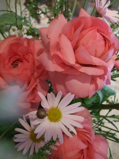 オークリーフ花の教室(それぞれの春を・・)_f0049672_199213.jpg