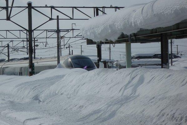 雪景色に驚嘆①_d0030373_953611.jpg
