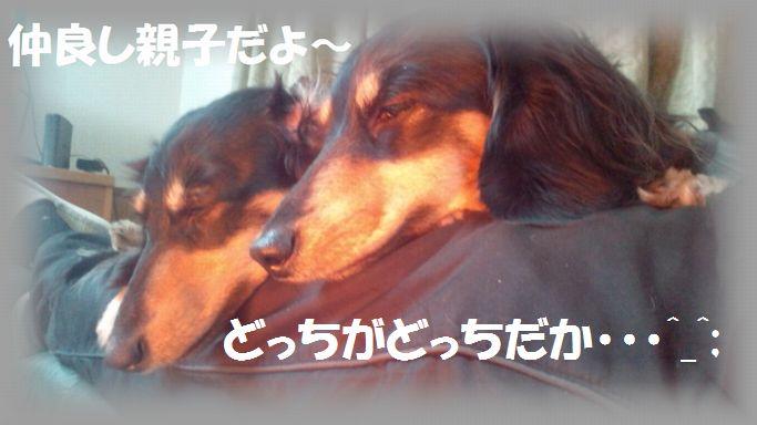 b0059087_9365066.jpg
