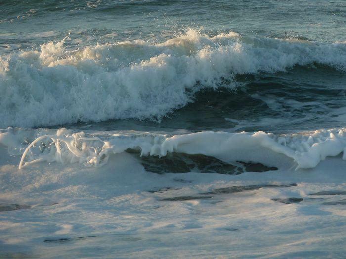 冬の海岸_b0093088_1439142.jpg