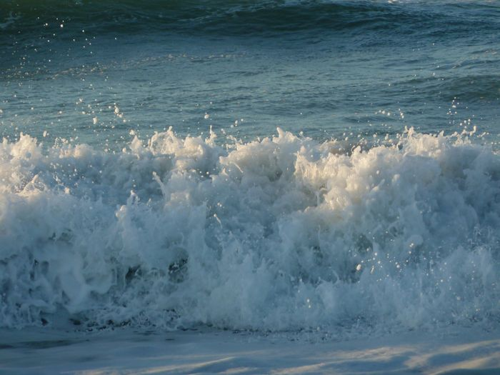 冬の海岸_b0093088_1439143.jpg