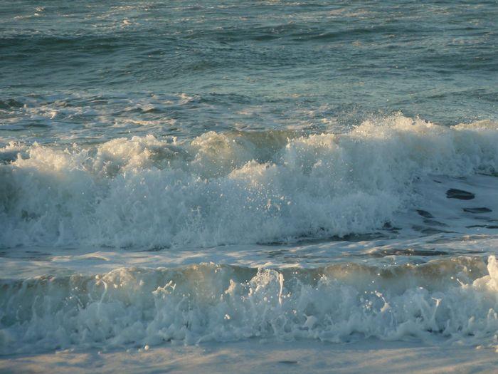 冬の海岸_b0093088_14392855.jpg