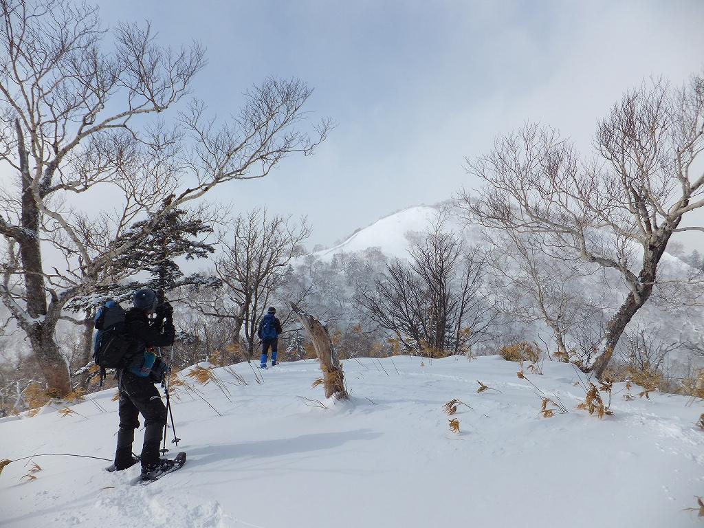 2月11日、オコタンペ山-その1-_f0138096_22461478.jpg