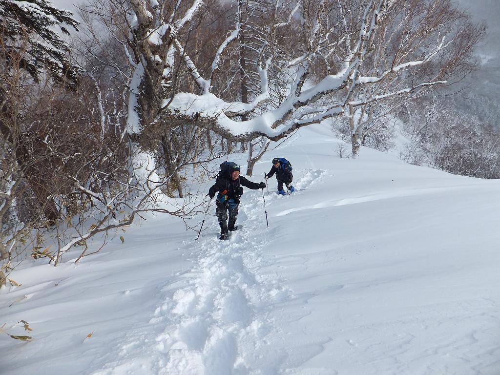 2月11日、オコタンペ山-その1-_f0138096_2246189.jpg