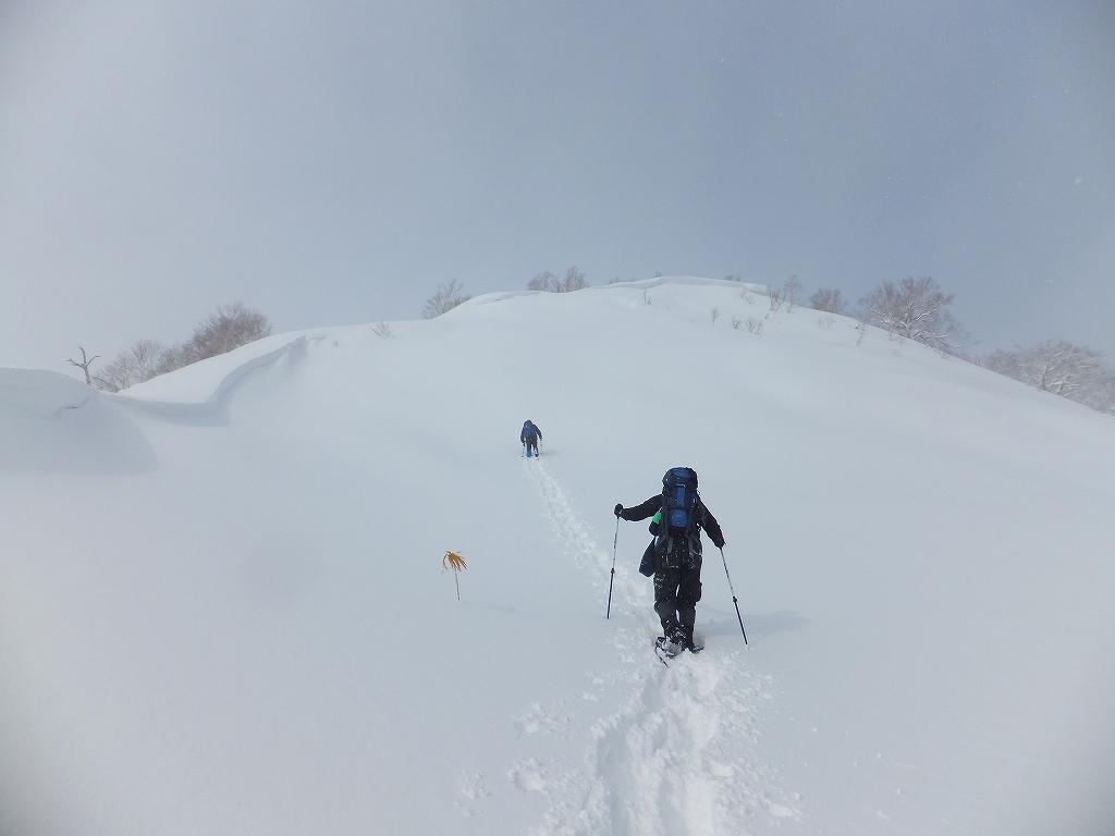 2月11日、オコタンペ山-その1-_f0138096_22462610.jpg