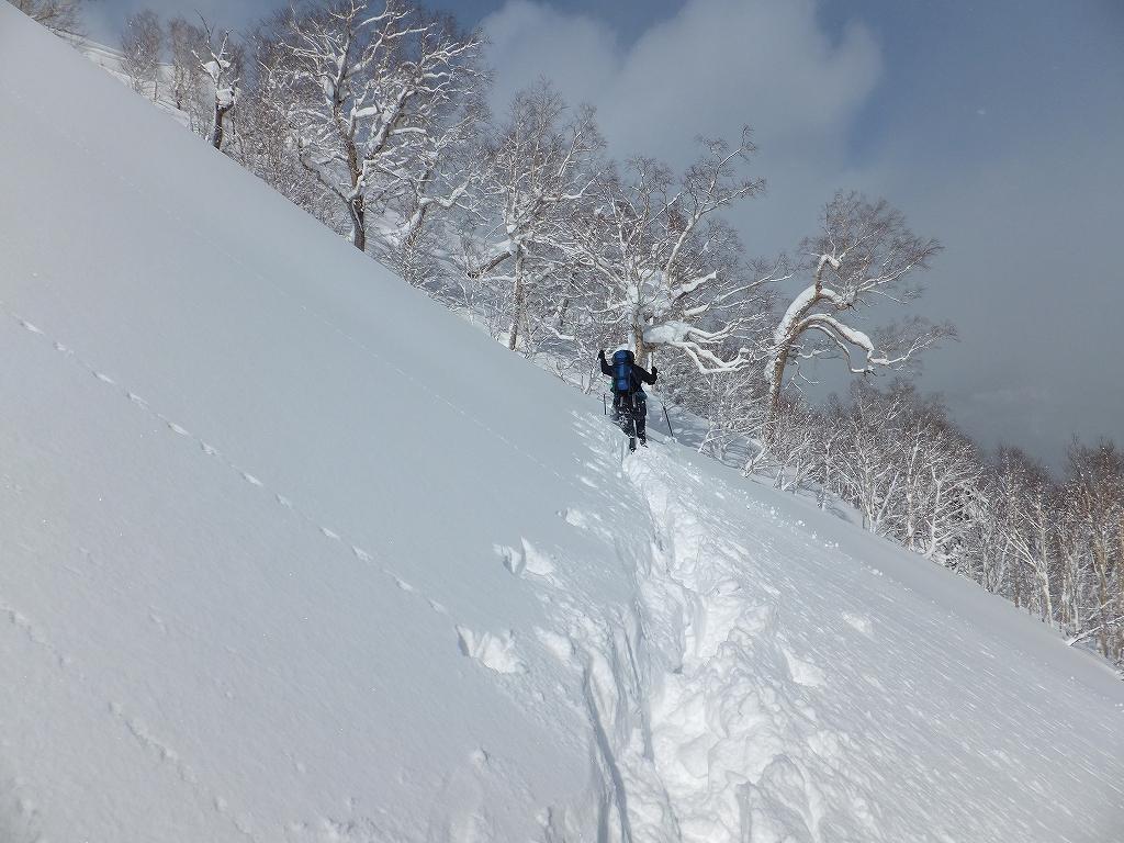 2月11日、オコタンペ山-その1-_f0138096_22472179.jpg