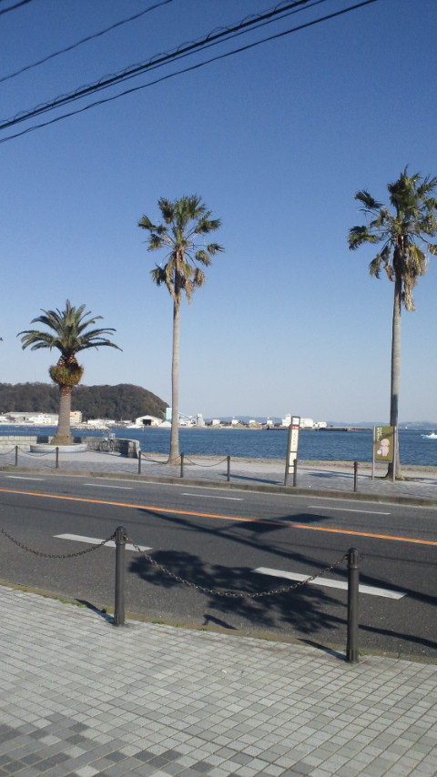 今日の久里浜海岸付近の絵_d0092901_2255667.jpg