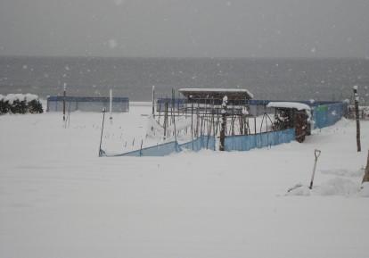 雪の日。_c0107612_7103610.jpg