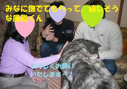 f0121712_20161361.jpg