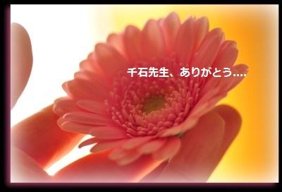 d0244833_16574267.jpg