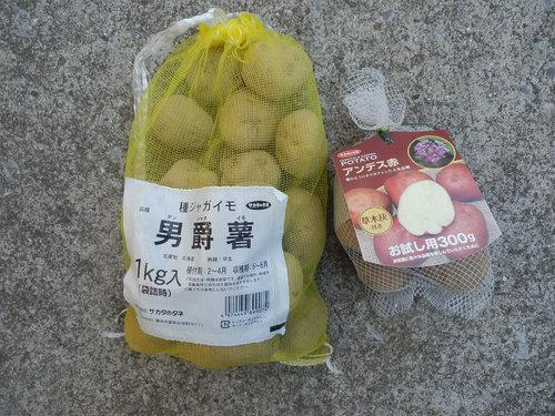 水菜でお鍋_c0053863_20585016.jpg
