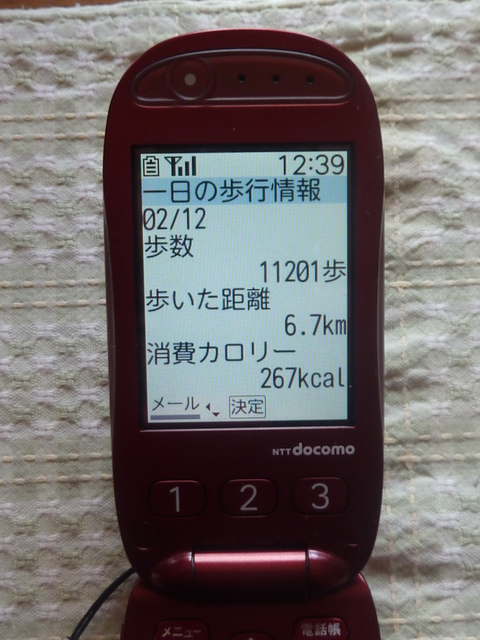 b0127486_20133375.jpg