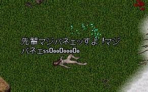 b0096491_8432372.jpg