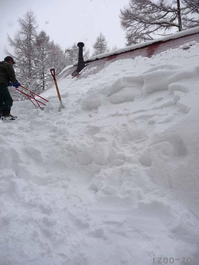 雪・雪・ユキィ〜(>。<)_c0223095_10441541.jpg