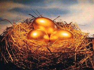 金色の卵を温めながら..._d0167002_1503164.jpg