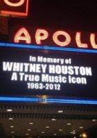 NYの地下鉄車内で乗客たちがホイットニー・ヒューストンさんを偲んでI will always love youを合唱_b0007805_95302.jpg