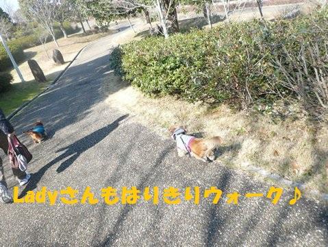 b0077721_14212440.jpg