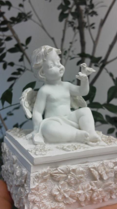 天使がやって来た_e0257524_19261671.jpg
