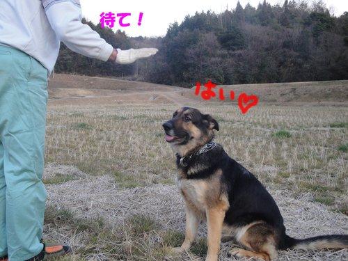 b0113663_9997.jpg