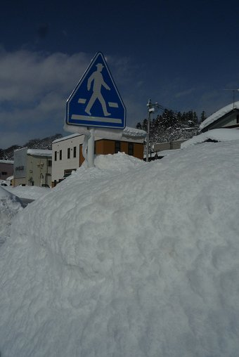 雪景色に驚嘆②_d0030373_2123757.jpg