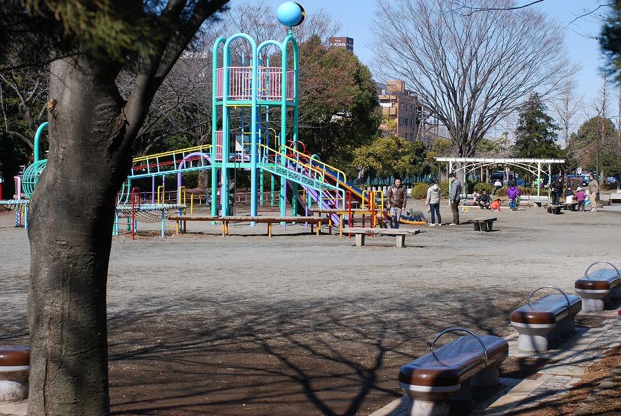 公園はまだ冬枯れの中_c0187781_071172.jpg