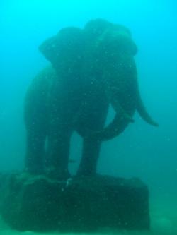 タイの象徴?象さんとダイビング_f0144385_2074034.jpg