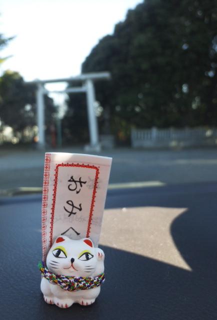 猫みくじ_f0144003_172167.jpg