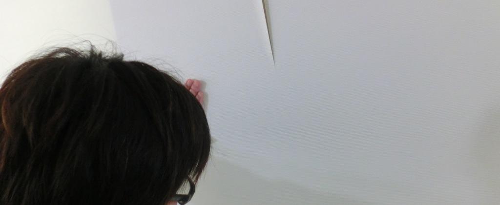 紙考戦隊 ハルルンジャー お手並み拝見_e0154712_1043452.jpg