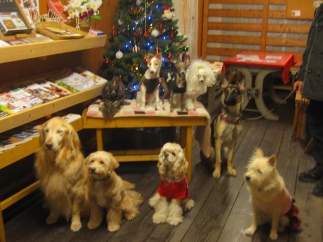 クリスマス前の集合写真_e0136815_832369.jpg