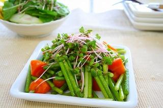 ♪新鮮 発芽野菜通信『褌』♪_d0063218_119124.jpg