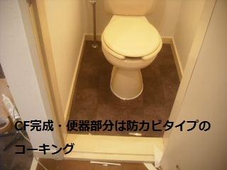 f0031037_22108.jpg