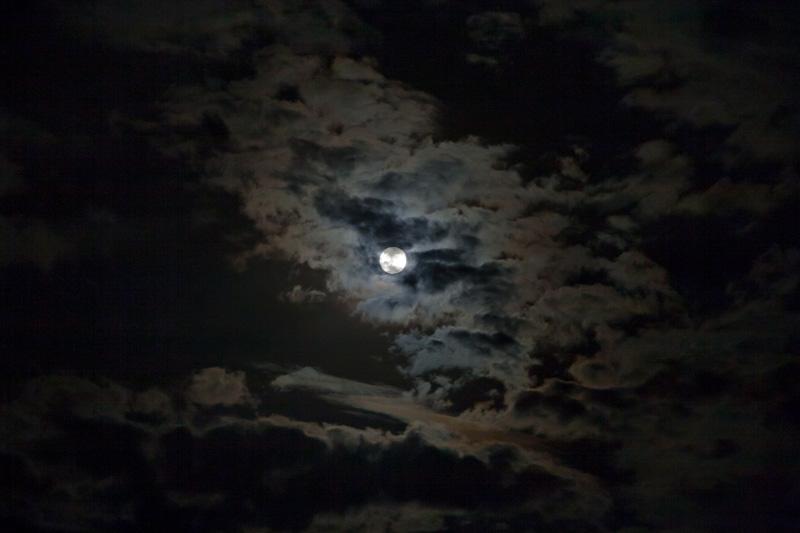 「月」といえば_f0137354_18383320.jpg